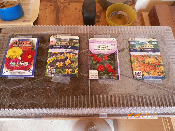 and still more seeds.